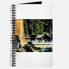 Retro Red Wood Park Journal