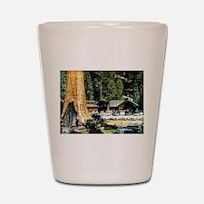 Retro Red Wood Park Shot Glass