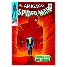 The Amazing Spider-Man (Spider-Man No More!)