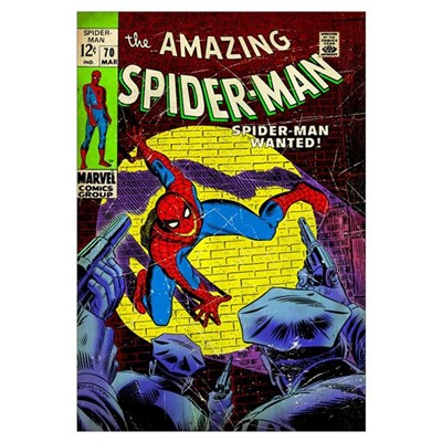 The Amazing Spider-Man (Spider-Man Wanted!) Poster