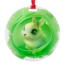 Cute Bunny in Green Ornament