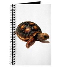 Funny Cute turtle Journal