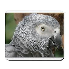 Grey Parrot Mousepad