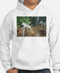 """""""Come on!, We Are Almost There"""" Hoodie"""