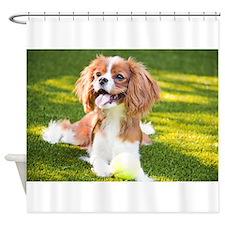 Happy Cavalier King Charles Spaniel Puppy Shower C