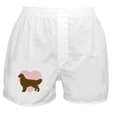 Golden Retriever Heart Boxer Shorts