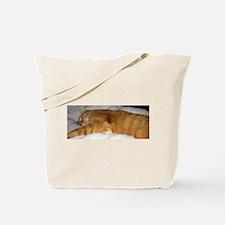 Orange Cat on His Day Off Tote Bag