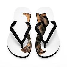 German Shepherd Flip Flops