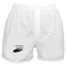Flying Crow Feather Boxer Shorts