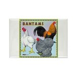 Bantam Chickens Rectangle Magnet (100 pack)