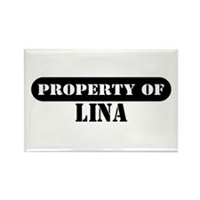 Property of Lina Rectangle Magnet