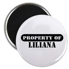 Property of Liliana Magnet