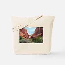 Kolob Canyons, Zion National Park, Utah, USA 4 Tot