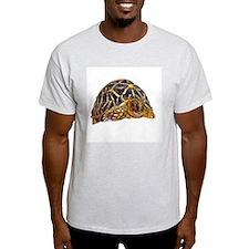 star tortoise Ash Grey T-Shirt