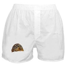 star tortoise Boxer Shorts