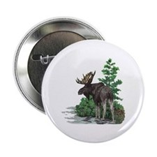"Bull moose art 2.25"" Button"
