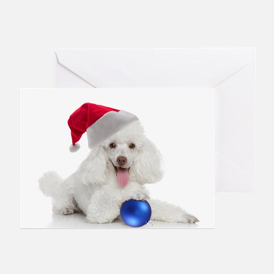 Santa Poodle Cards (Pk of 20)