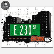 E 230 St Puzzle