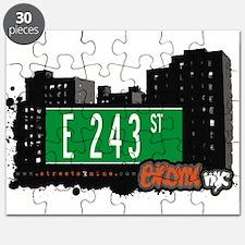 E 243 St Puzzle