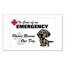 Please Rescue Chessie Rectangle Decal