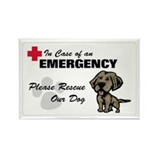 Please Rescue Chessie Rectangle Magnet