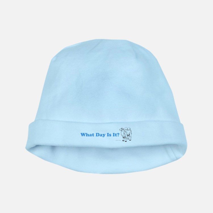 What Day Is It baby hat