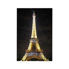 Eiffel Tower Light Show Magnet