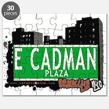 E Cadman plaza, BROOKLYN, NYC Puzzle