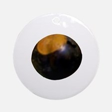 YOU KNOW WHAT THIS IS. Ornament (Round)