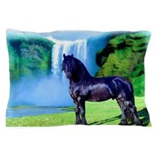 Hidden Horse Canyon Pillow Case