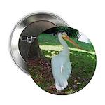 pelican Button
