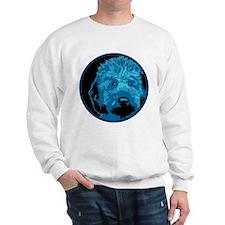Lab_c2_round4.png Sweatshirt