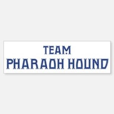 Team Pharaoh Hound Bumper Bumper Bumper Sticker