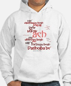 Not What I Meant (Klingon) Hoodie