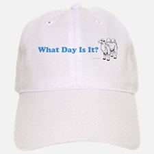 What Day Is It Baseball Baseball Baseball Cap