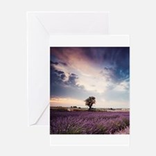 Tree in lavender field at sunrise Provence France