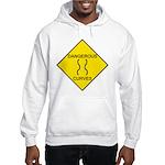 Dangerous Curves Sign Hooded Sweatshirt