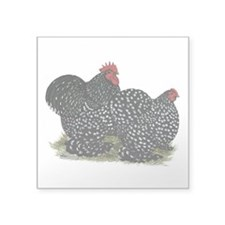 Cochins Mottled Pair Sticker