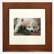 Pyr Pup -- Framed Tile