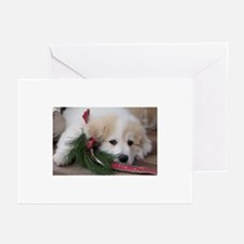 Pyr Pup -- Greeting Cards (Pk of 10)