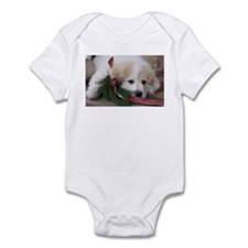 Pyr Pup -- Infant Bodysuit
