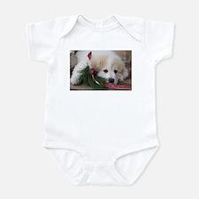 Pyr Pup -- Infant Bodysuit