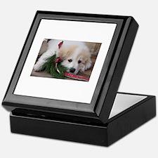Pyr Pup -- Keepsake Box