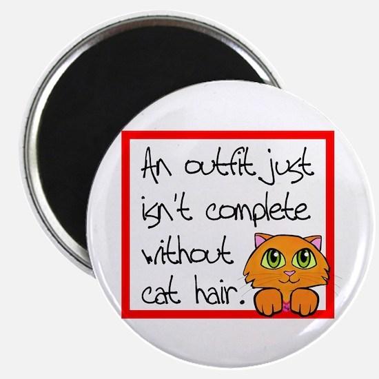 Cat Hair Magnet