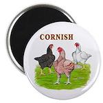 Cornish Trio Magnet