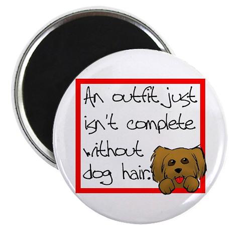 Dog Hair Magnet