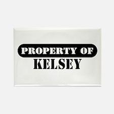 Property of Kelsey Rectangle Magnet