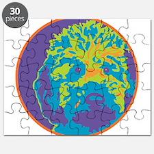 Lab_c2_round.png Puzzle