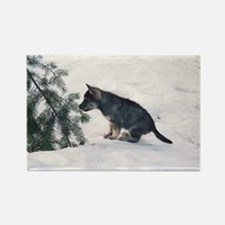 """Wolf Dog Cub"" Rectangle Magnet"