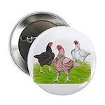 Assorted Cornish Button